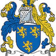 Foord Coat Of Arms Irish Art Print