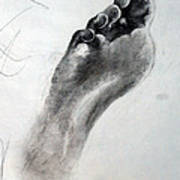 Foot Study Art Print by Corina Bishop