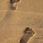 Footprints Art Print