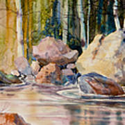 Forest And River Art Print