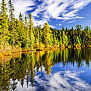 Forest And Sky Reflecting In Lake Art Print