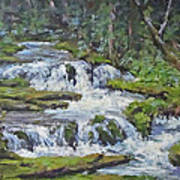 Forest Creek Art Print