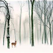 Forest Friend Art Print