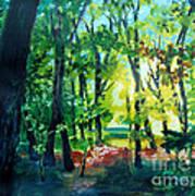 Forest Scene 1 Art Print