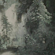 Forest Shore Art Print