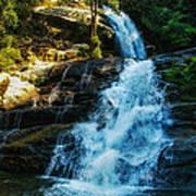 Forest Waterfall Art Print