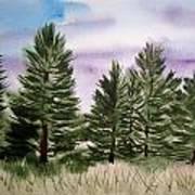 Forest's Edge Art Print