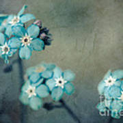 Forget Me Not 01 - S22dt06 Art Print