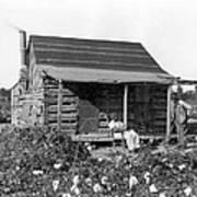 Former Slaves At Their Cabin Art Print
