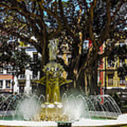 Fountain Alicante Art Print