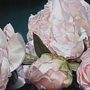 Four Blooms 45 X 80cm Art Print