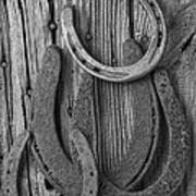 Four Horseshoes Art Print by Garry Gay