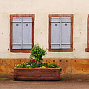 Four Pale Blue Shutters In Alsace France Art Print