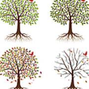 Four Seasons In One Tree Art Print