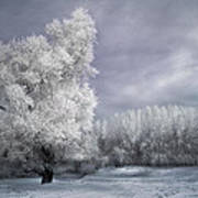 Four Seasons - Winter Art Print by Akos Kozari