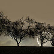 Four Trees And A Moon Art Print