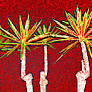 Four Yuccas In Red Art Print
