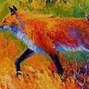 Fox Hunt  Art Print