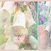 Foxgloves - The Trilogy Art Print