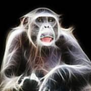 Fractal Chimp Art Print