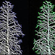 Fractal Seasons - Inverted Tetraptych Art Print