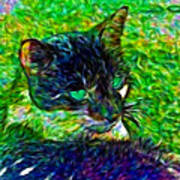 Fractalias Feline Art Print
