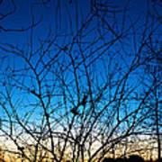 Fractured Sunset Art Print