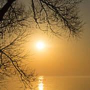 Framing The Golden Sun Art Print