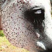 Freckle Face Art Print