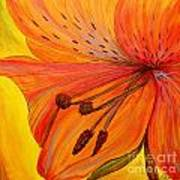 Freckles On Orange Art Print