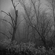 Freezing Rogue Valley Fog At Night Art Print