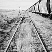 freight grain trucks on former canadian pacific railway now great sandhills railway through leader S Art Print