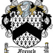 French Coat Of Arms Irish Art Print