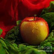 Fresh Apple On Silk Art Print