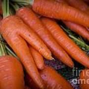 Fresh Carrots On A Street Fair In Brazil Art Print