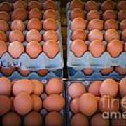 Fresh Eggs On A Street Fair In Brazil Art Print