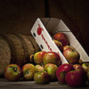 Fresh From The Orchard I Art Print