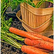 Fresh Garden Vegetables Art Print