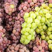 Fresh Grapes On Display Art Print