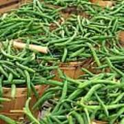 Fresh Green Beans In Baskets Art Print by Teri Virbickis