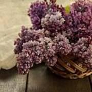 Fresh Lilacs In Brown Basket Art Print