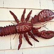Fresh Maine Lobster Sign Boothbay Harbor Maine Art Print