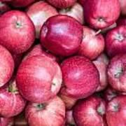 Fresh Red Apples Art Print