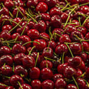 Fresh Red Cherries Art Print