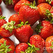 Fresh Strawberry Art Print