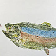 Freshwater Rainbow Trout With Fly Print by Nancy Gorr