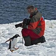 Friend Of The Penguins... Art Print