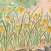 Lkp's Friendly Garden Art Print