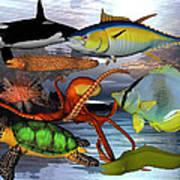 Friends Of The Sea Art Print