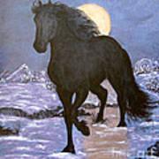 Friesian Horse Blue Moonlight Setting Art Print